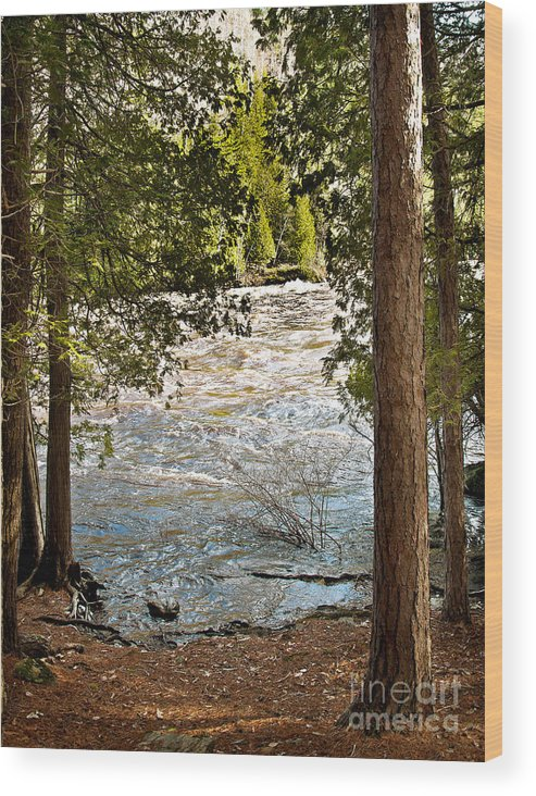 Piers Gorge Wood Print featuring the photograph Piers Gorge by Gwen Gibson