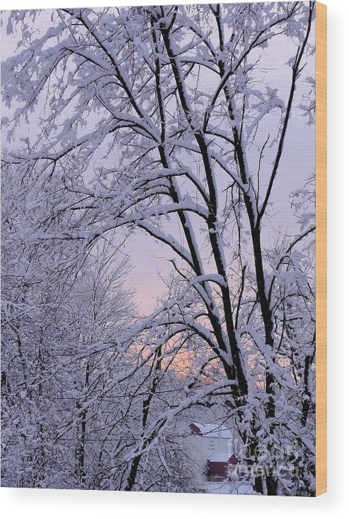 Bucks County Playhouse Wood Print featuring the photograph Playhouse Through Snow by Christopher Plummer