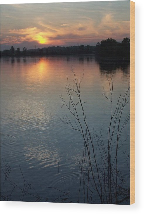 Sunset Wood Print featuring the photograph Evening Calm by Stephen Estell