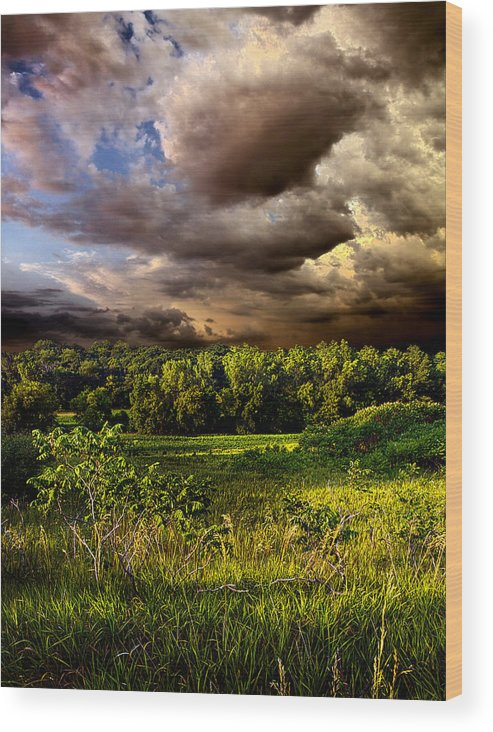 Horizons Wood Print featuring the photograph Now And Then by Phil Koch