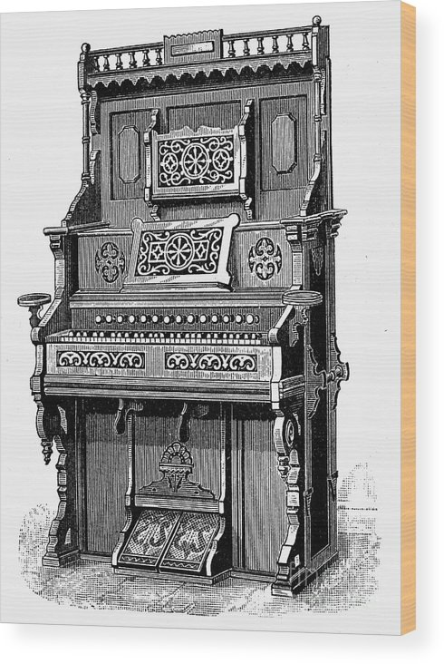 19th Century Wood Print featuring the photograph Organ, 19th Century by Granger