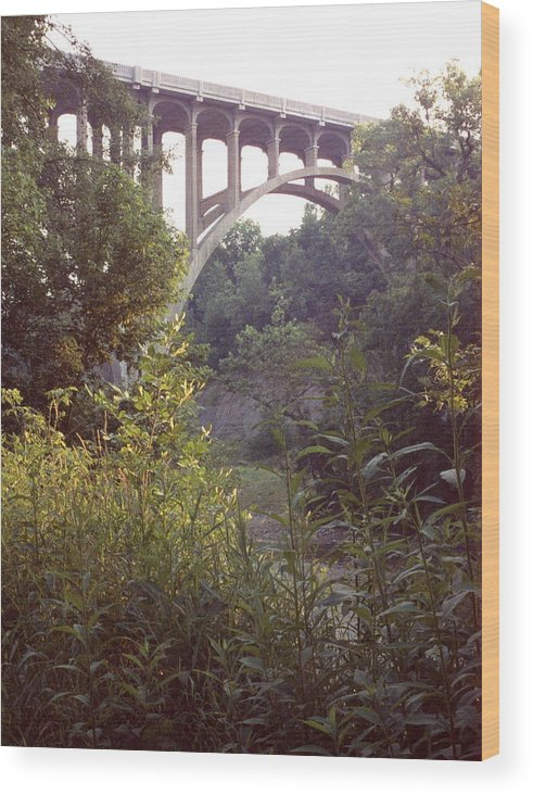Bridge Wood Print featuring the photograph 042507-33 by Mike Davis