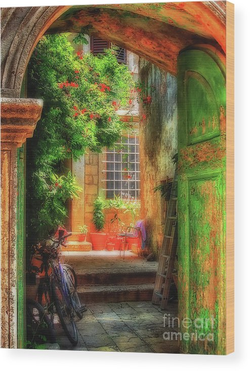 Doorway Wood Print featuring the photograph A Glimpse by Lois Bryan