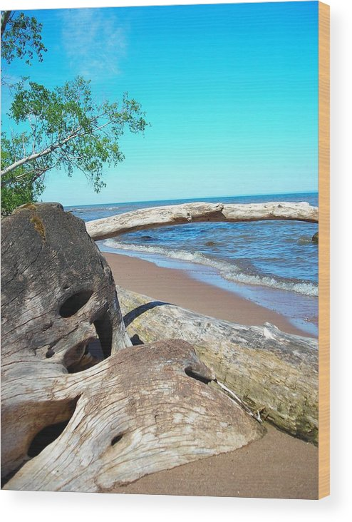 Beach Wood Print featuring the photograph Beach Lodging by Peter Mowry