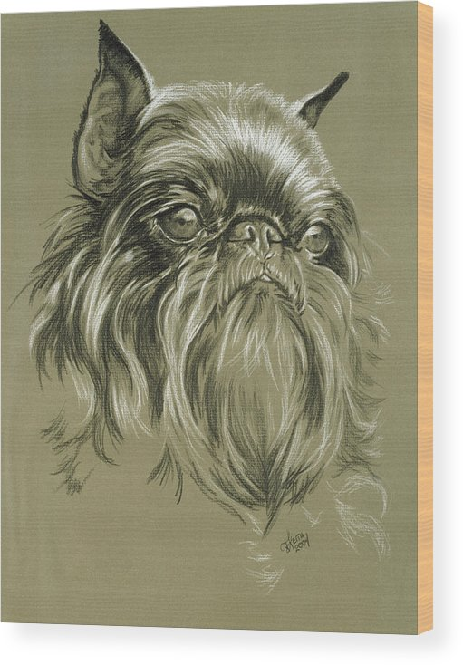 Toy Group Wood Print featuring the drawing Belgian Griffon In Charcoal by Barbara Keith