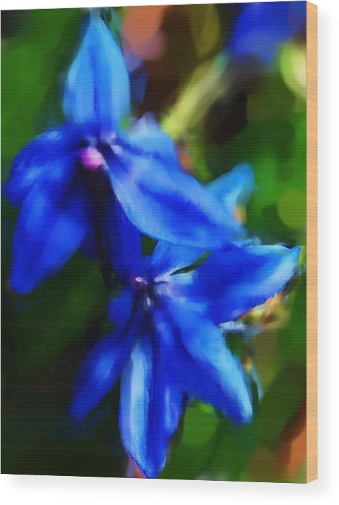 Digital Photograph Wood Print featuring the photograph Blue Flower 10-30-09 by David Lane