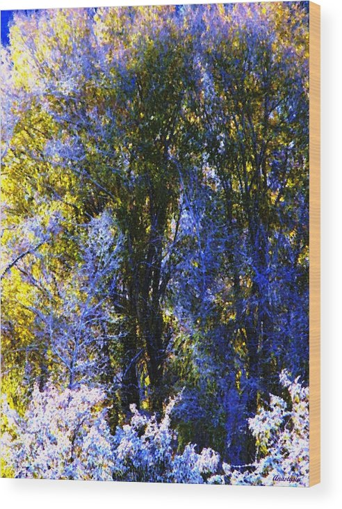 A Dazzling Morning When The Snow Was Resembling A Lavender Lace Or Filigree On The Trees! Wood Print featuring the photograph Bosque Glow And Chantilly Snow by Anastasia Savage Ealy