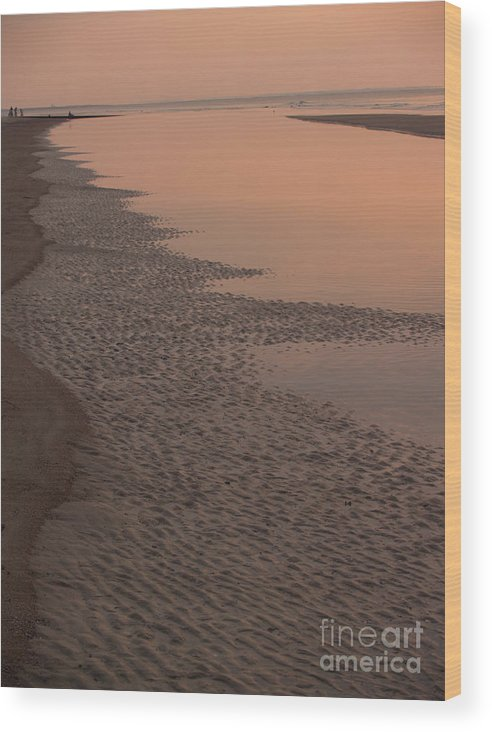 Sunrise Wood Print featuring the photograph Coastal Strand At Dawn On Hunting Island by Anna Lisa Yoder