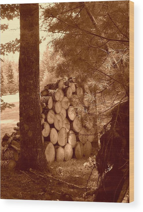 Firewood Wood Print featuring the photograph Firewood by Peter Mowry