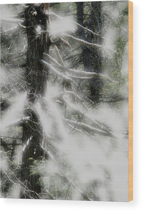Trees Wood Print featuring the digital art Georgia Pines by Donna Thomas