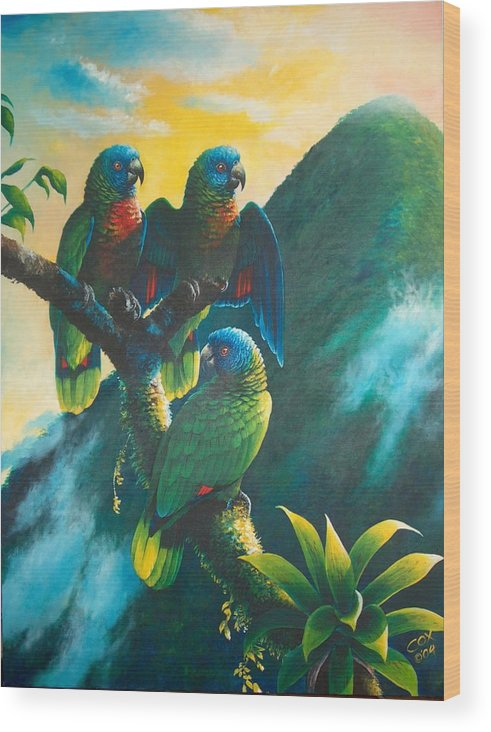Chris Cox Wood Print featuring the painting Gimie Dawn 1 - St. Lucia Parrots by Christopher Cox