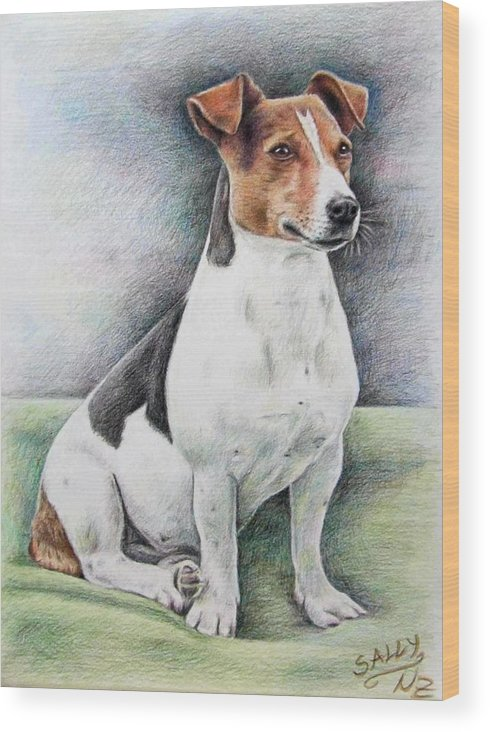 Dog Wood Print featuring the drawing Jack Russell Terrier by Nicole Zeug