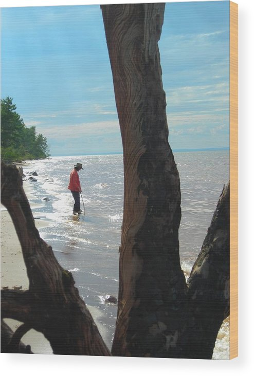 Beach Wood Print featuring the photograph Lost Woman by Peter Mowry
