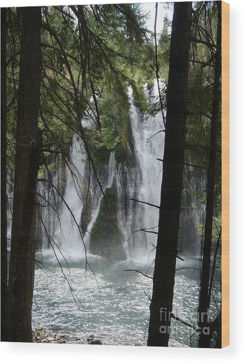 Mythical Figures Wood Print featuring the photograph Man Of The Falls by Stephanie H Johnson