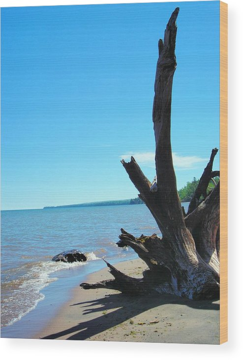 Landscape Wood Print featuring the photograph On The Water Front by Peter Mowry