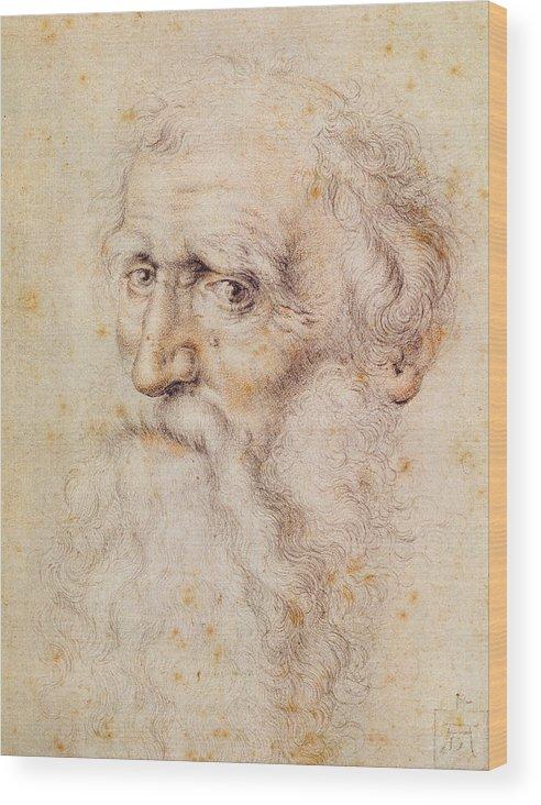 Albrecht Durer Or Duere Wood Print featuring the drawing Portrait Of A Bearded Old Man by Albrecht Durer or Duerer