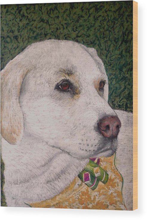 Dog Wood Print featuring the painting Sara by David Horning