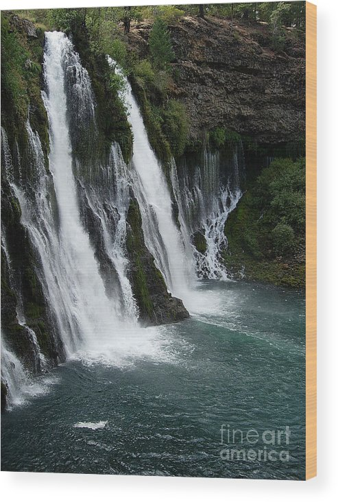 Tranquility Wood Print featuring the photograph The Tranquility Of Waterfalls by Stephanie H Johnson