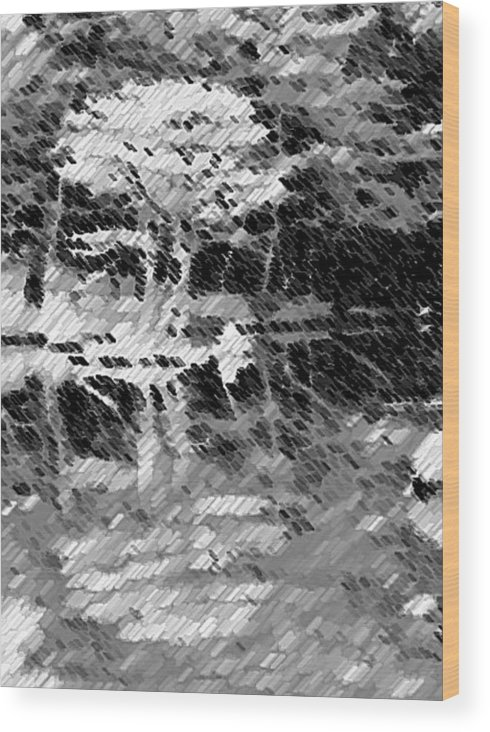 Abstract Wood Print featuring the photograph Tree Reflecting In Pond by Curtis Schauer