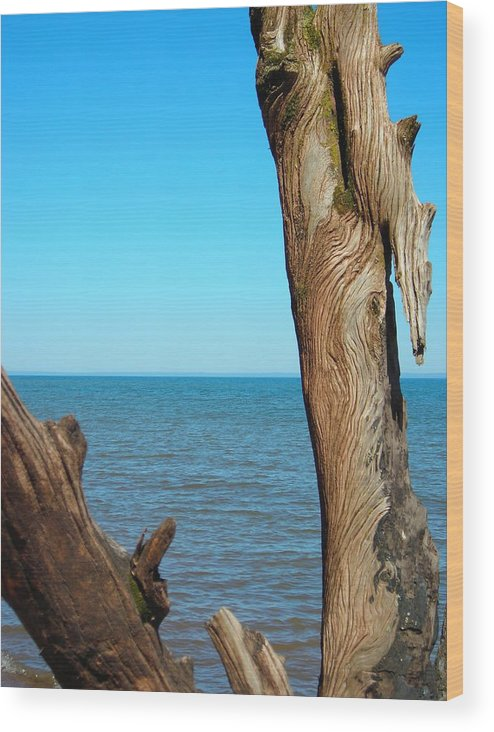 Ocean Wood Print featuring the photograph Tribal Markings by Peter Mowry