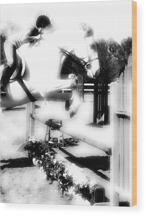 Horse Wood Print featuring the photograph Up. Up And Away by Donna Thomas
