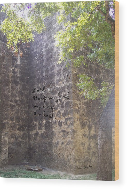 Faith Wood Print featuring the photograph Wrong Turn by Diana Gonzalez