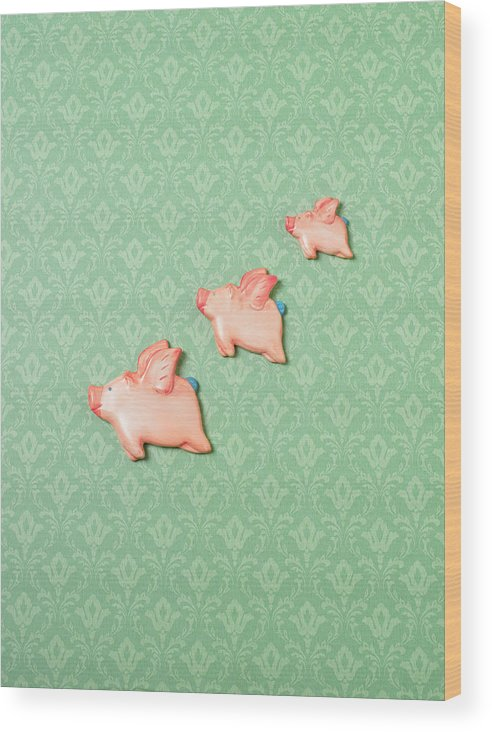Disbelief Wood Print featuring the photograph Flying Pig Ornaments On Wallpapered by Peter Dazeley