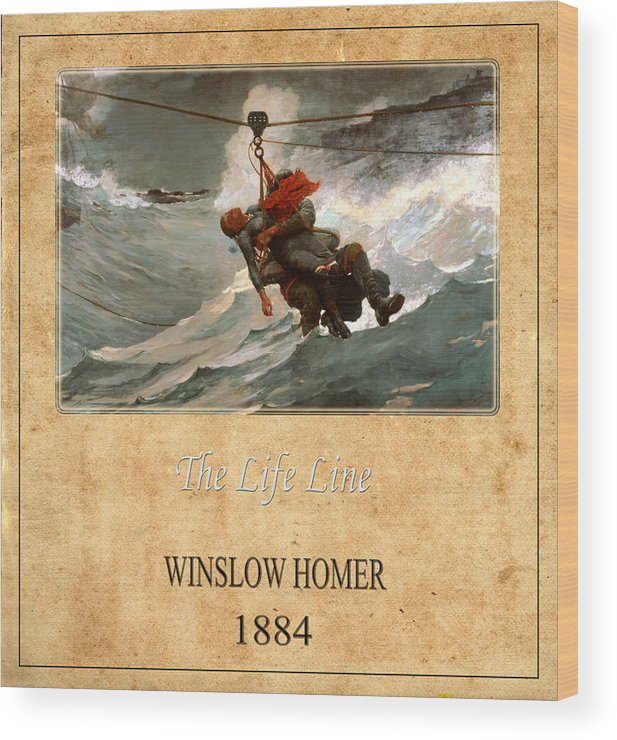 Homer Wood Print featuring the photograph Winslow Homer 3 by Andrew Fare