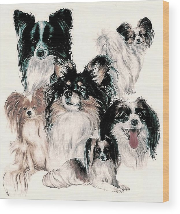 Toy Group Wood Print featuring the mixed media Papillon And Phalene Collage by Barbara Keith