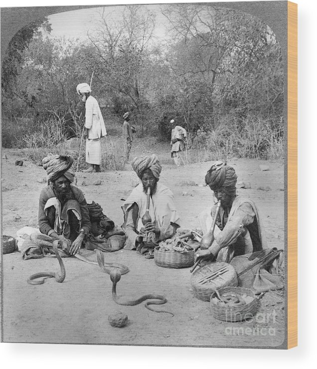 1903 Wood Print featuring the photograph Delhi: Snake Charmers by Granger