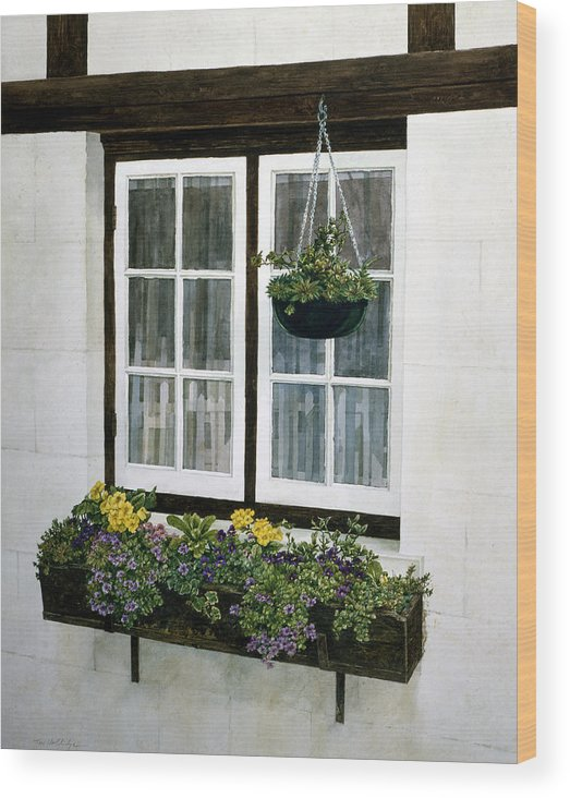 Still Life Wood Print featuring the painting Window Box by Tom Wooldridge