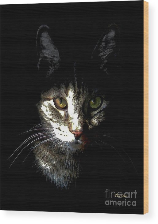 Cats Wood Print featuring the digital art Zack In Shadows by Dale  Ford