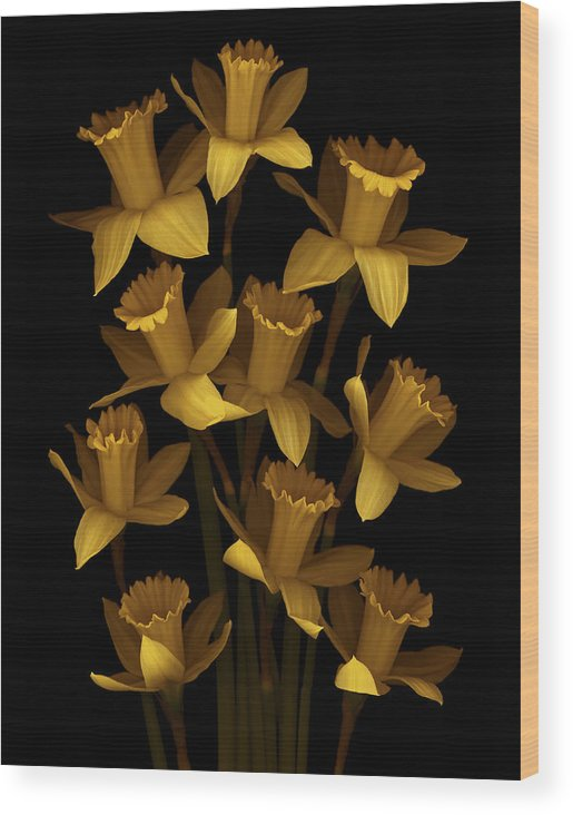 Floral Wood Print featuring the photograph Dark Daffodils by Marsha Tudor