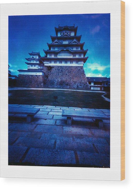 Pinhole Wood Print featuring the photograph Himeji Castel by Luca Baldassari