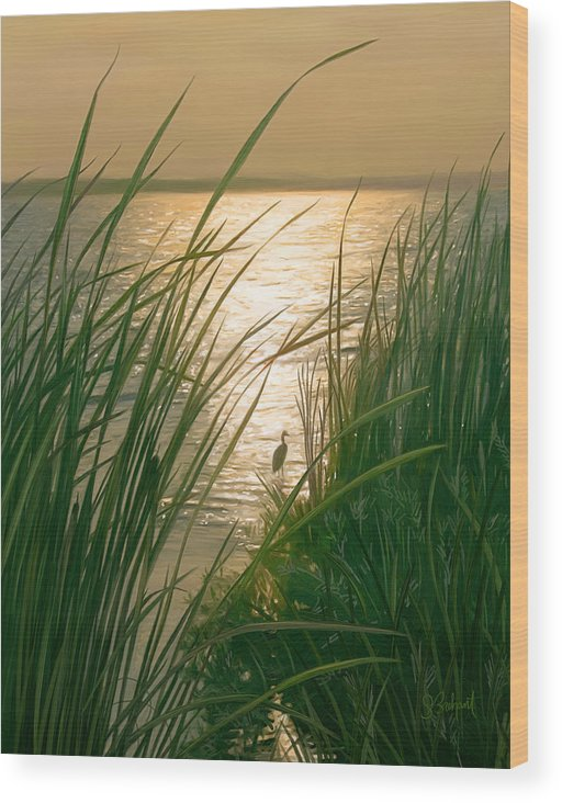 Cape Cod Wood Print featuring the digital art Marsh Sunset by Sue Brehant