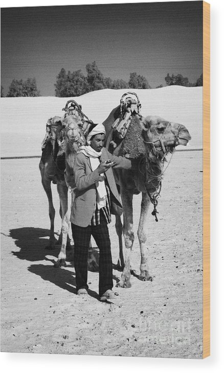 Tunisia Wood Print featuring the photograph Bedouin Camel Minder Recieves Call On A Mobile Phone With Camels In The Sahara Desert At Douz Tunisia by Joe Fox