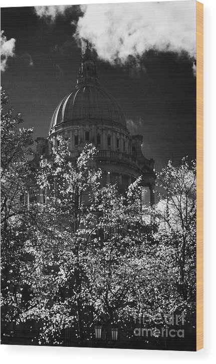 Belfast Wood Print featuring the photograph Green Copper Dome Of Belfast City Hall With Blue Cloudy Sky Behind Trees With Autumn Leaves Vertical by Joe Fox