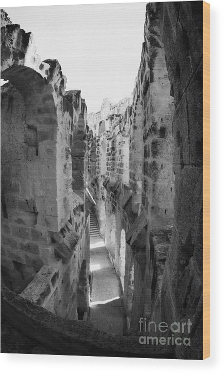 Tunisia Wood Print featuring the photograph Looking Down On Internal Walkways From Upper Tier Of Old Roman Colloseum El Jem Tunisia Vertical by Joe Fox