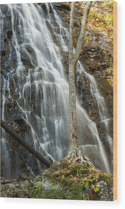 Landscape Wood Print featuring the photograph Crabtree-1 by Joye Ardyn Durham