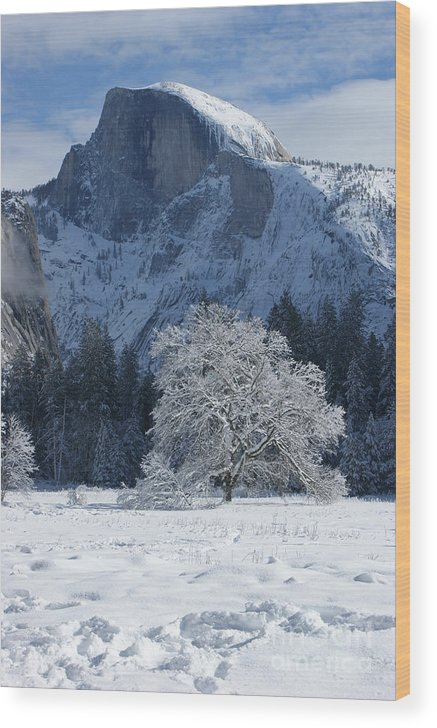 Half Dome Wood Print featuring the photograph Half Dome In Winter by Christine Jepsen