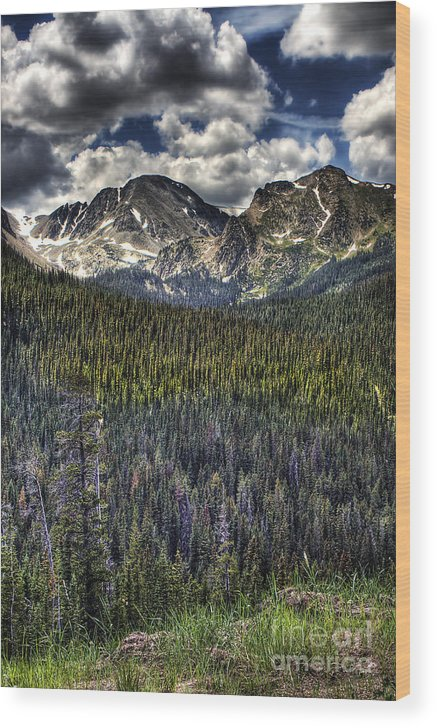 Landscape Wood Print featuring the photograph Scenic View From The Highway by Pete Hellmann