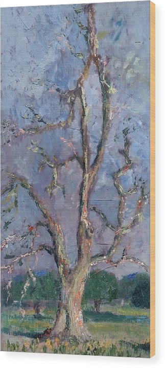 Oil Wood Print featuring the painting Gnarly Old Tree by Horacio Prada