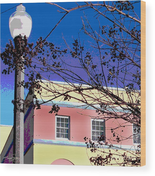 Sanford Florida Wood Print featuring the photograph A Winters Day In Florida by Bonnie Sprung