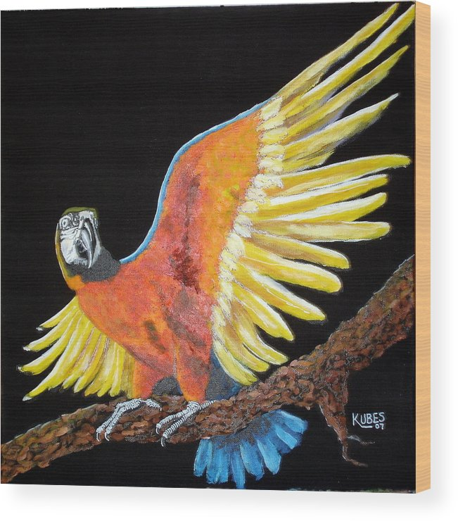 Macaw Wood Print featuring the painting Macaw - Wingin' It by Susan Kubes