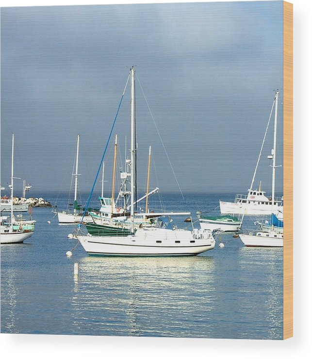 Seascapes Wood Print featuring the photograph Monterey Bay by Donna Thomas