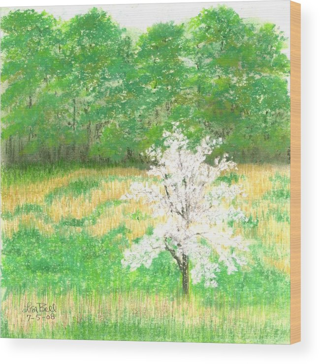 Landscape Wood Print featuring the painting Studio Windows-7-5-08-dogwood by Lisa Bell