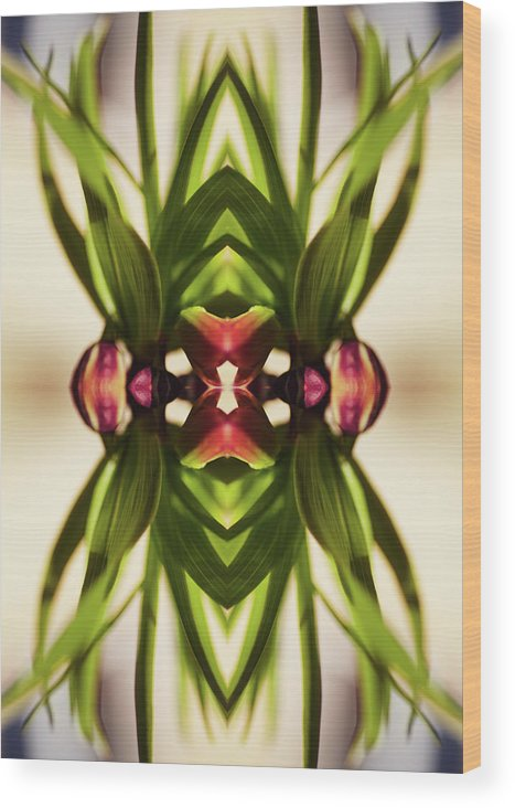 Fritillaria Wood Print featuring the photograph Fritillaria Flower Plant by Silvia Otte