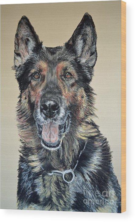 Schutzhund Wood Print featuring the pastel German Shepherd Jim by Ann Marie Chaffin