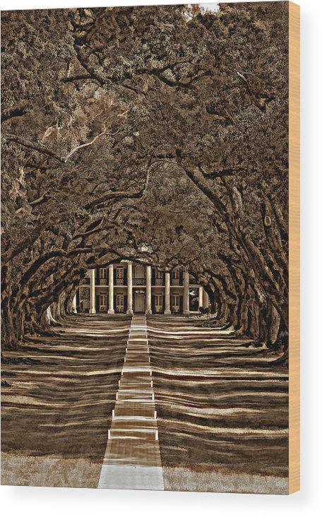 Oak Alley Plantation Wood Print featuring the photograph Oak Alley Bw by Steve Harrington