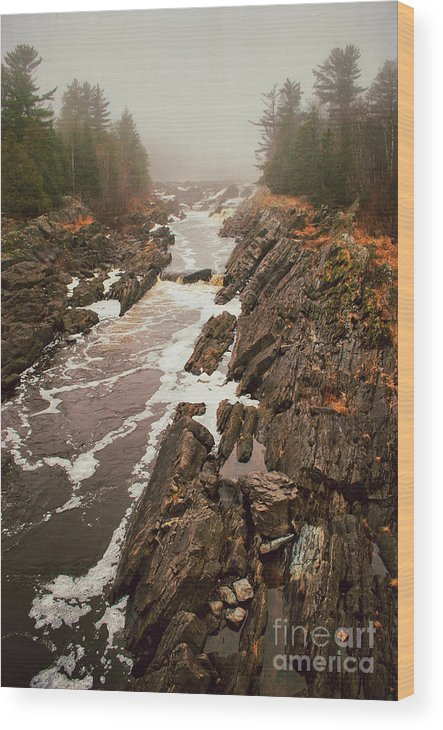 Jay Cooke Wood Print featuring the photograph Jay Cooke Under Fog by Ever-Curious Photography